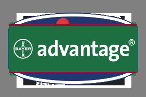 advantage-prodotti-cuneo